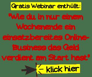 Online Business Webinar
